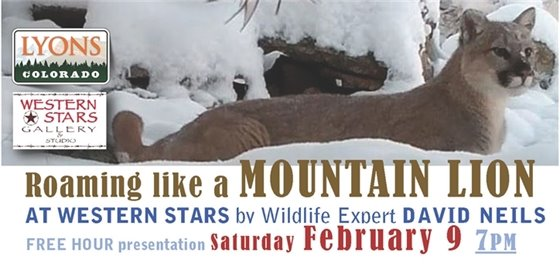 Free Mountain Lion Presentation by David Neils